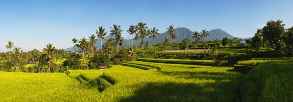 Bali Reisebericht, Kuta bis Amed, Urlaub aufBali